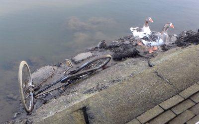 Graafse stuw geramd door schip: Laag water
